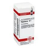 Produktbild DHU Phytolacca D 1 Globuli