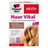 Produktbild Doppelherz Haar Vital+Zink+Hirseextrakt Kapseln