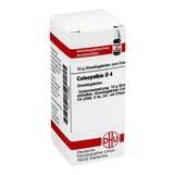 Produktbild DHU Colocynthis D 4 Globuli