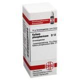 Produktbild DHU Kalium phosphoricum D 12 Globuli