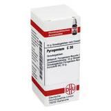 Produktbild DHU Pyrogenium C 30 Globuli