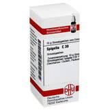 Produktbild DHU Spigelia C 30 Globuli