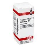 Produktbild DHU Phytolacca D 2 Globuli