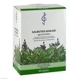 Produktbild Salbei Tee Auslese geschnitten