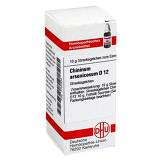 Produktbild DHU Chininum arsenicosum D 12 Gl