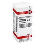Produktbild DHU Eupatorium perfoliatum C 12