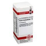 Produktbild DHU Fucus vesiculosus D 12 Globuli