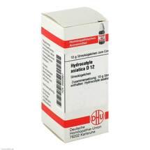 Hydrocotyle asiatica D 12 Gl