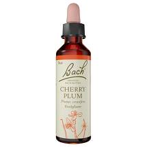 Bachblüten Nr. 6 Cherry Plum Tropfen
