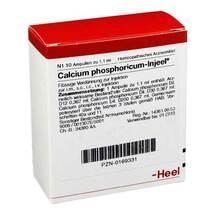 Calcium phosphoricum Injeel Ampullen
