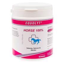 Equolyt Horse 100% vet. Pulver