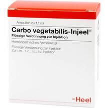 Produktbild Carbo vegetabilis Injeel Ampullen