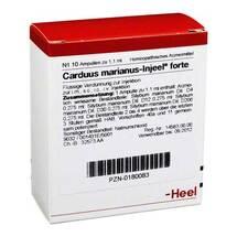 Produktbild Carduus marianus Injeel forte Ampullen