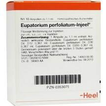 Produktbild Eupatorium perfoliatum Injeel Ampullen