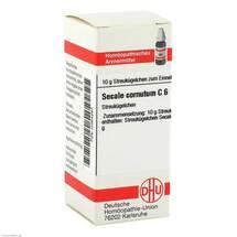 Secale cornutum C 6 Globuli
