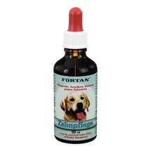 Produktbild Fortan Zahnpflegemittel vet. (für Tiere)