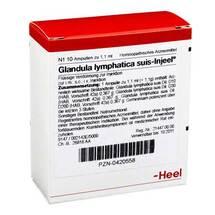 Produktbild Glandula Lymphatica suis Injeel Ampullen