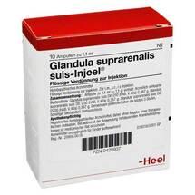 Produktbild Glandula Suprarenalis suis Injeel Ampullen