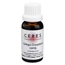 CERES Ginkgo dryopteris comp. Tropfen