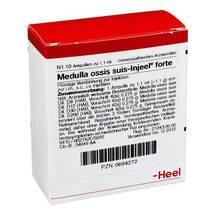 Produktbild Medulla Ossis suis Injeel forte Ampullen