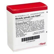 Produktbild Medulla Spinalis suis Injeel Ampullen