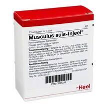 Produktbild Musculus suis Injeel Ampullen