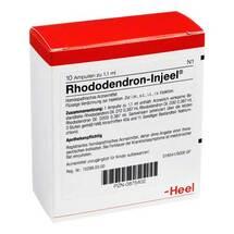 Produktbild Rhododendron Injeel Ampullen