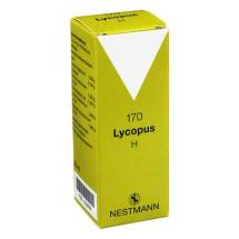 Produktbild Lycopus H Nr. 170 Tropfen