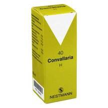 Convallaria H Nr. 40 Tropfen