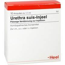 Urethra Suis Injeel Ampullen