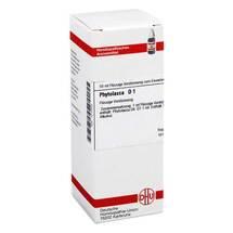 Produktbild Phytolacca D 1 Dilution