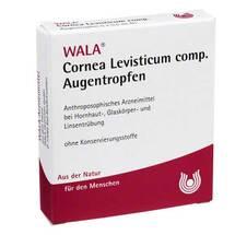 Cornea / Levisticum comp. Aug