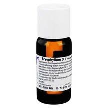 Produktbild Bryophyllum D 1 Dilution