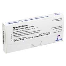 Produktbild Apis mellifica D 6 Ampullen