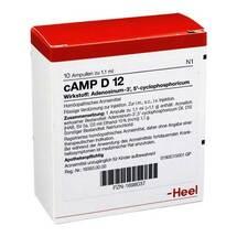 Produktbild Camp D 12 Ampullen