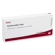 Parathyreoidea comp. Ampullen