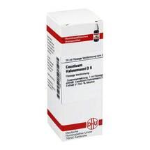 Produktbild causticum Hahnemanni D 6 Dilution