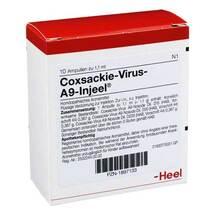 Coxsackie-Virus A9 Injeel Ampullen