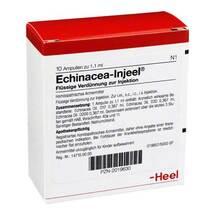 Produktbild Echinacea Injeel Ampullen