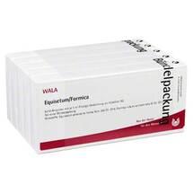Produktbild Equisetum / Formica Ampullen
