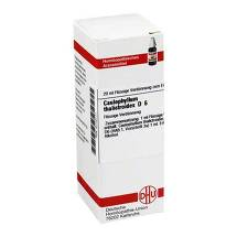 Produktbild Caulophyllum thalictroides D 6 Dilution