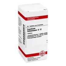 Produktbild causticum Hahnemanni D 12 Tabletten