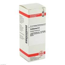 Produktbild Eichhornia D 2 Dilution