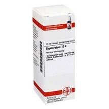 Produktbild Euphorbium D 4 Dilution