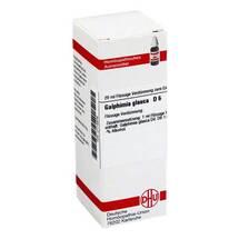 Galphimia glauca D 6 Dilution