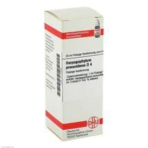 Produktbild Harpagophytum procumbens D 4 Dilution
