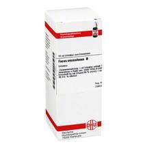 Produktbild Fucus vesiculosus Urtinktur