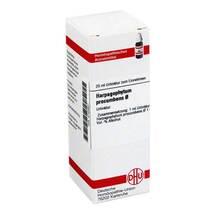 Produktbild Harpagophytum procumbens Urtinktur