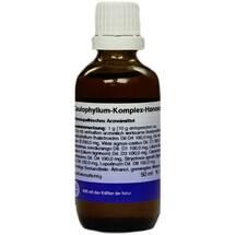 Caulophyllum Komplex flüssig