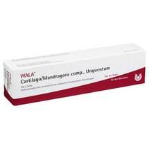 Produktbild Cartilago / Mandragora comp.Salbe